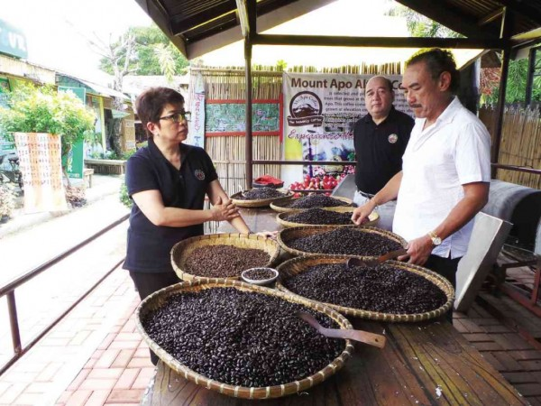 COFFEE experts Chit Juan (left) and Nick Matti (middle) inspect local beans.